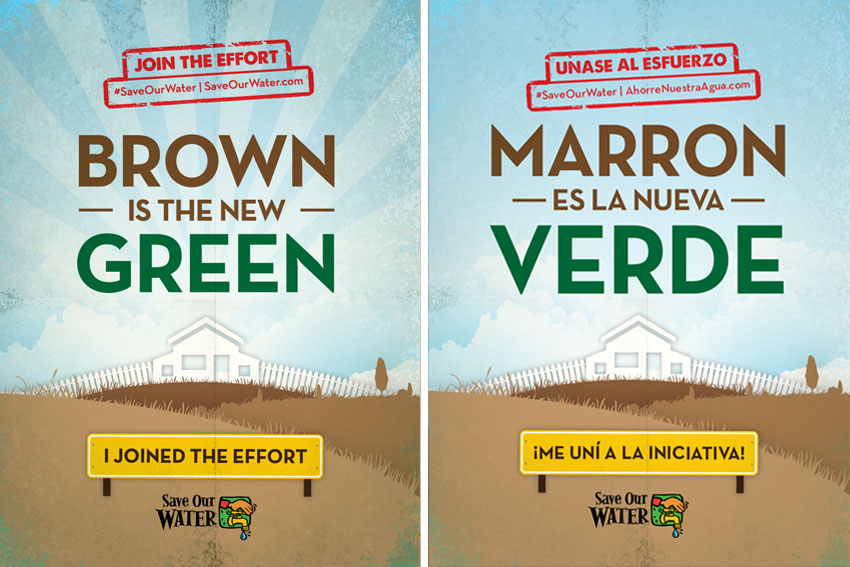 brown-is-the-new-green.jpg